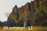 Windjana Gorge NP  AFY-494 ©Marie Lochman - Lochman LT