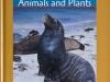 marine-and-coastal-animals-web