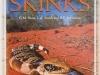 skinks-web